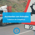 accidentes con animales